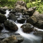 節水できる節約アイテムや方法と効果。エコの理由と意義は?